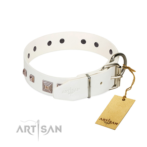 Amazing collar of full grain leather for your lovely four-legged friend