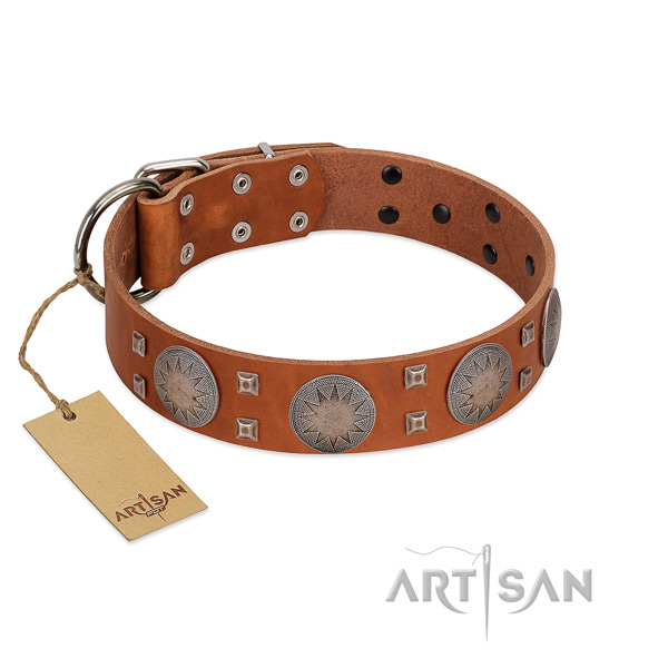 Adorned genuine leather collar for your attractive dog
