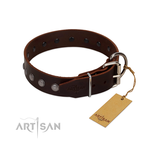 Designer genuine leather collar for daily walking your dog
