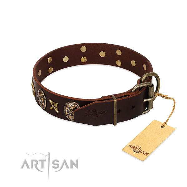 Full grain leather dog collar with durable hardware and studs