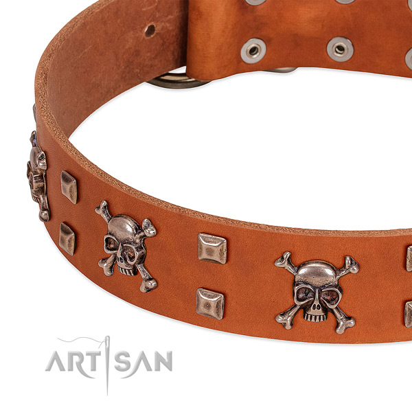 Unique leather collar for your doggie