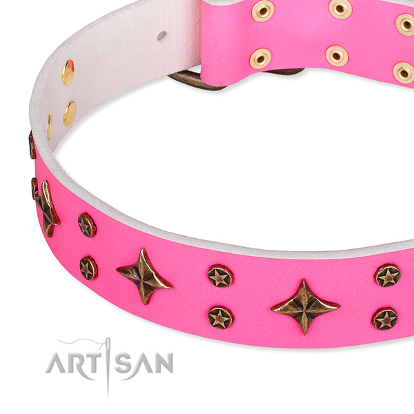 Everyday use decorated dog collar of finest quality full grain genuine leather