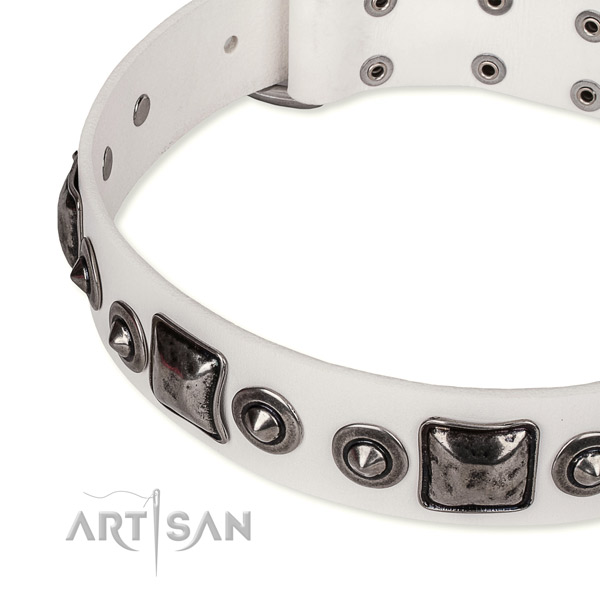 Reliable full grain leather dog collar created for your lovely canine