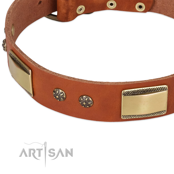 Rust resistant buckle on full grain leather dog collar for your four-legged friend
