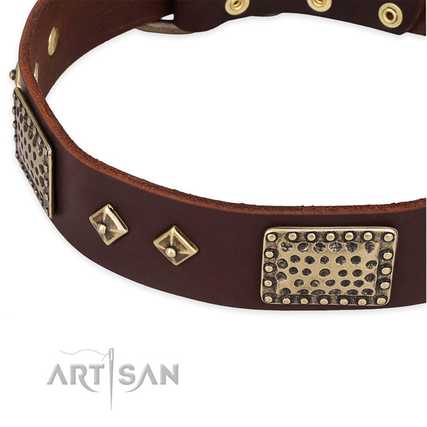 Strong studs on full grain leather dog collar for your doggie