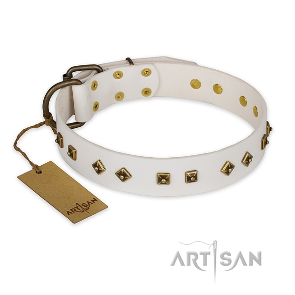 Decorated leather dog collar with corrosion resistant buckle