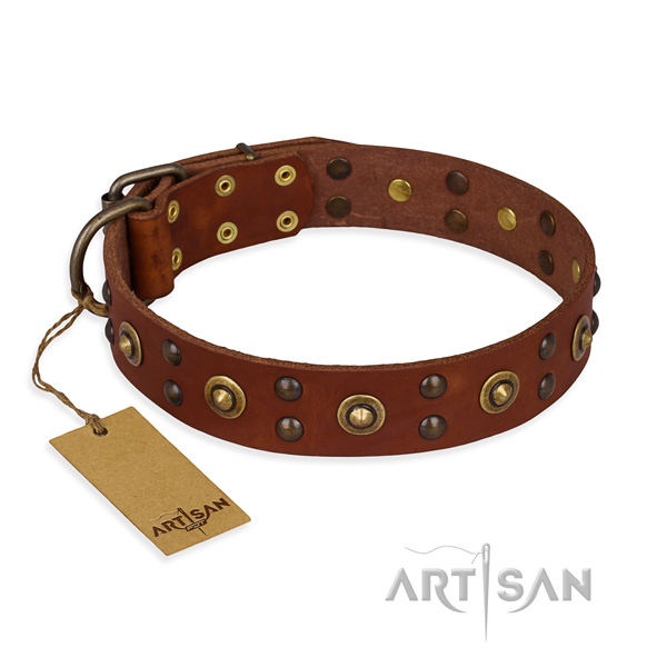 Best quality genuine leather dog collar with strong fittings