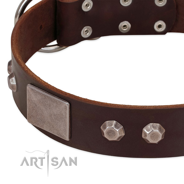 Everyday walking quality full grain natural leather dog collar