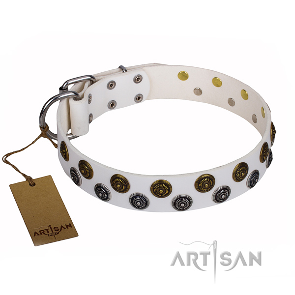 Basic training dog collar of best quality natural leather with adornments