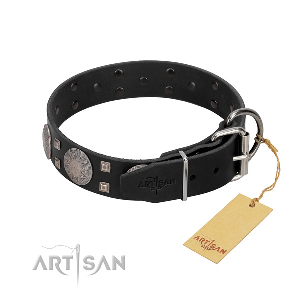 Unusual full grain genuine leather dog collar for everyday walking your canine