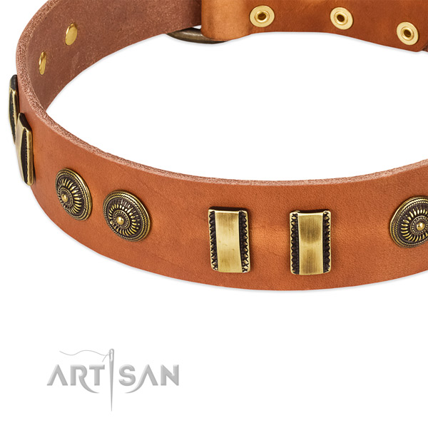 Rust-proof traditional buckle on leather dog collar for your dog
