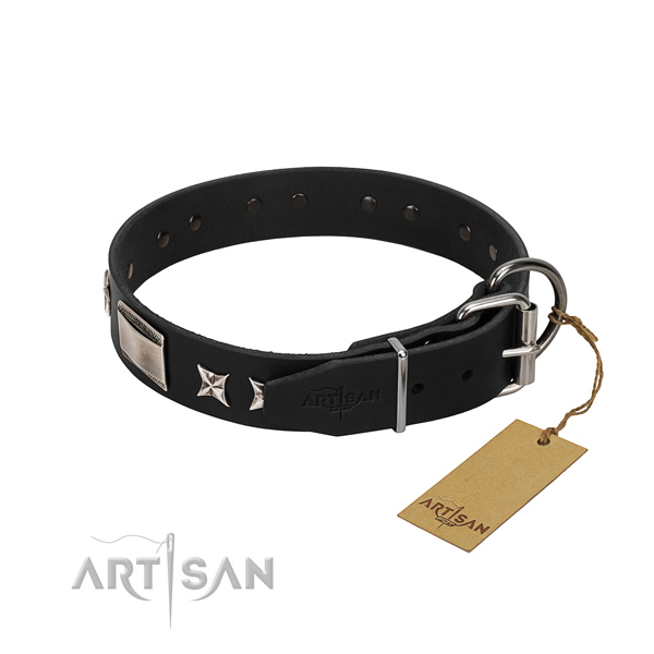 High quality leather dog collar with strong fittings