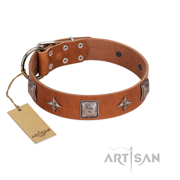 Soft natural leather dog collar with studs for daily walking
