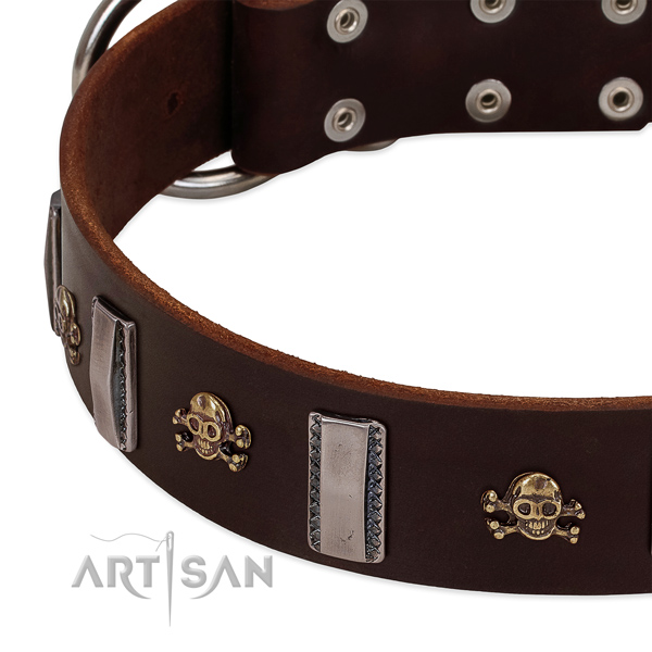 Top quality dog collar of full grain leather with decorations