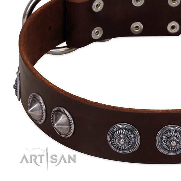 Top rate full grain natural leather dog collar with designer decorations
