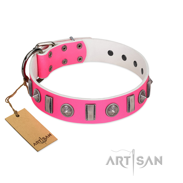 Quality full grain leather dog collar with studs for your doggie