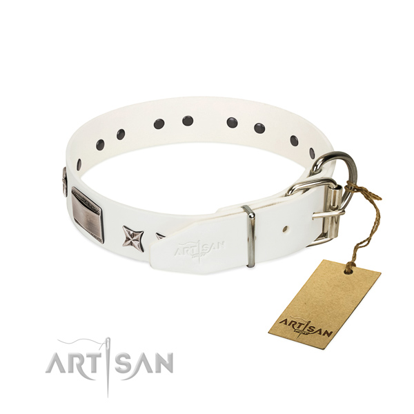 Fashionable collar of genuine leather for your attractive doggie