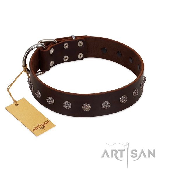 Walking genuine leather dog collar with inimitable decorations