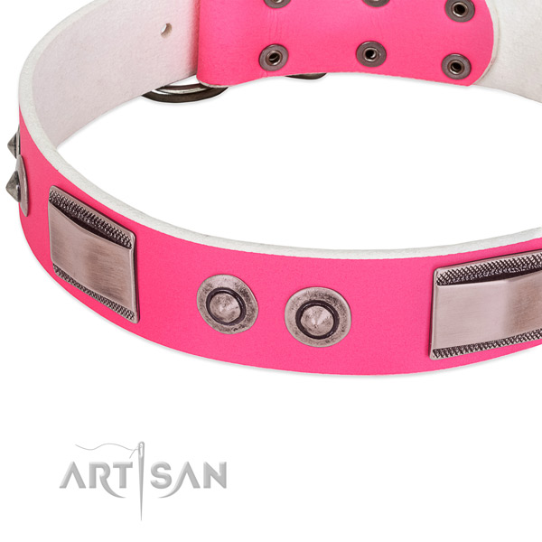 Easy wearing full grain leather collar with adornments for your dog
