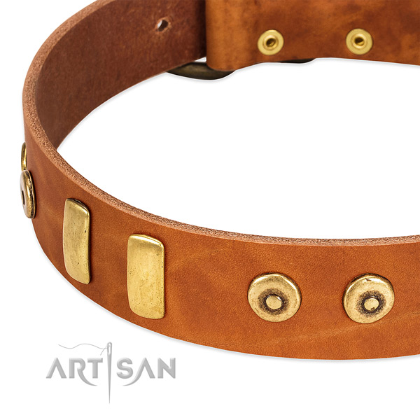 Top notch full grain leather collar with stunning embellishments for your dog