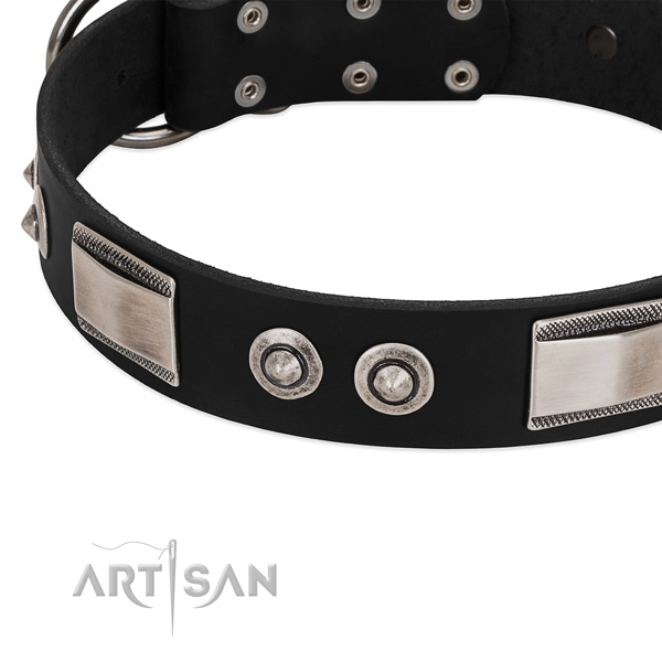 Exceptional genuine leather collar for your dog