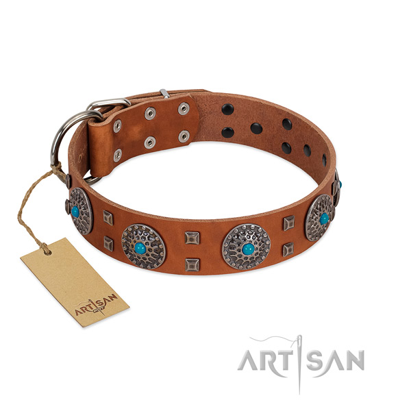 Everyday use natural leather dog collar with designer studs