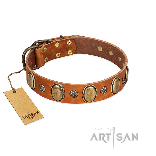 Daily walking reliable leather dog collar with adornments