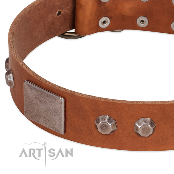 Daily use soft to touch full grain natural leather dog collar
