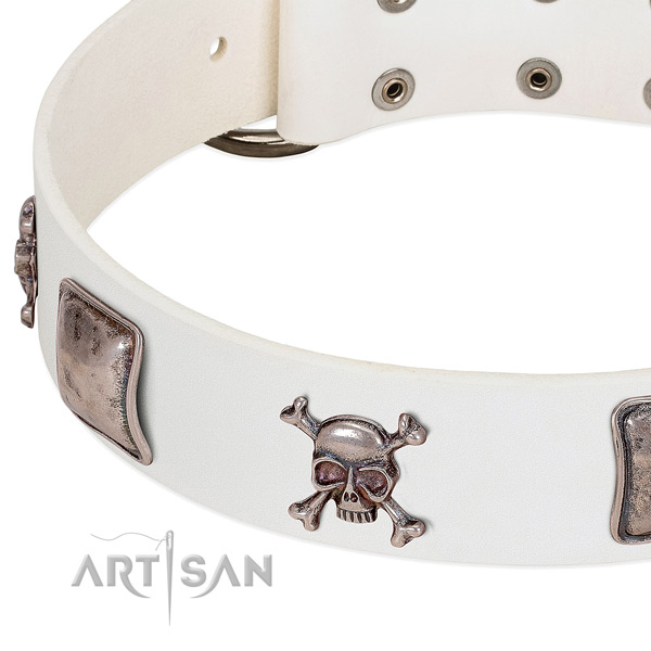 Durable decorations on full grain leather dog collar