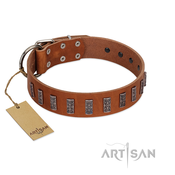 Strong leather dog collar with strong hardware