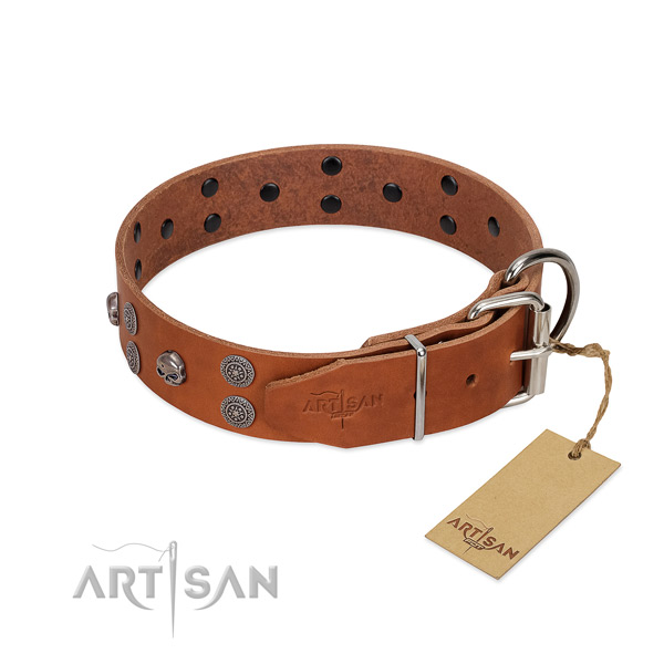 Best quality leather dog collar with studs for fancy walking