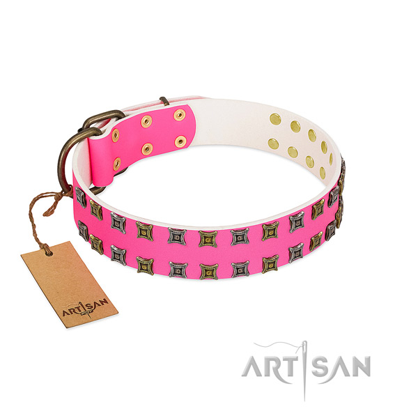 Genuine leather collar with remarkable studs for your pet