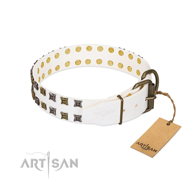 Genuine leather collar with top notch embellishments for your canine