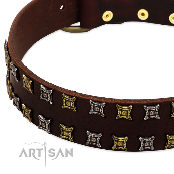 Best quality full grain natural leather dog collar for your handsome pet