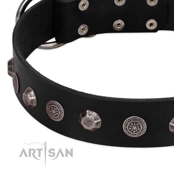 Amazing leather dog collar for handy use