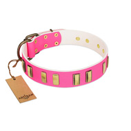 """Rubicund Frill"" FDT Artisan Pink Leather Amstaff Collar with Engraved and Smooth Plates"