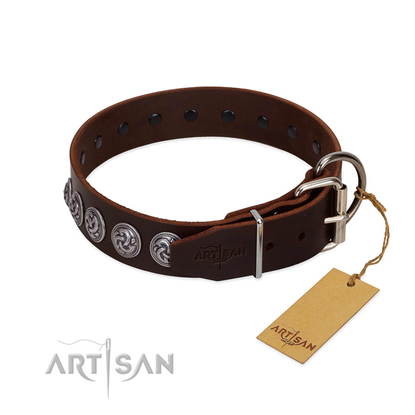 Corrosion proof traditional buckle on incredible leather dog collar