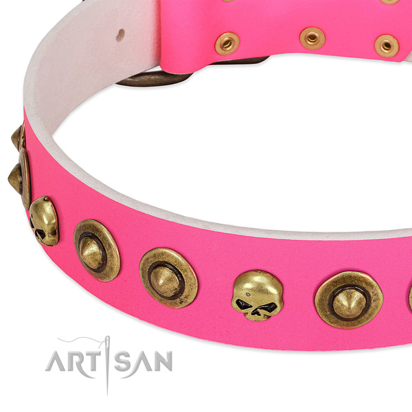 Stylish adornments on full grain natural leather collar for your pet