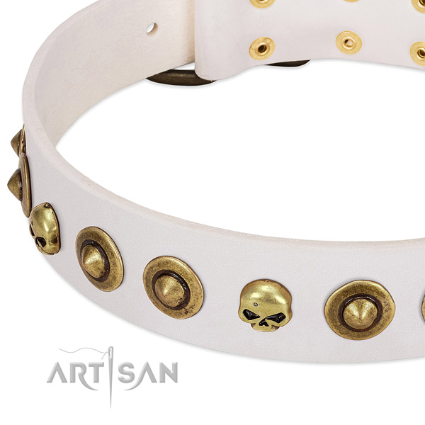 Extraordinary studs on full grain leather collar for your four-legged friend