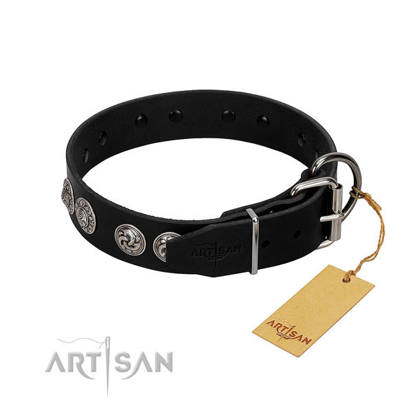 Extraordinary full grain natural leather collar for your canine walking