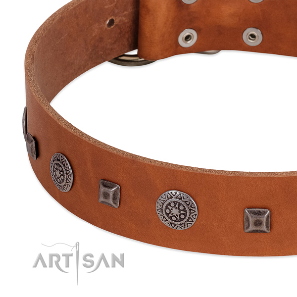 Unusual dog collar of full grain genuine leather with adornments