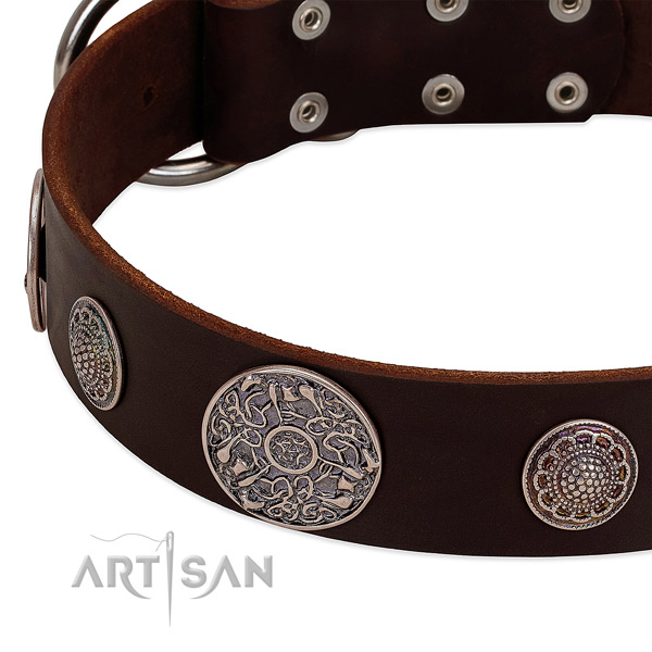 Rust resistant studs on full grain leather dog collar