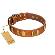 """Olive Slice"" FDT Artisan Tan Leather Amstaff Collar with Engraved and Smooth Plates"