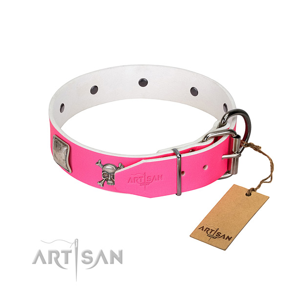 Comfy wearing full grain genuine leather dog collar with extraordinary studs