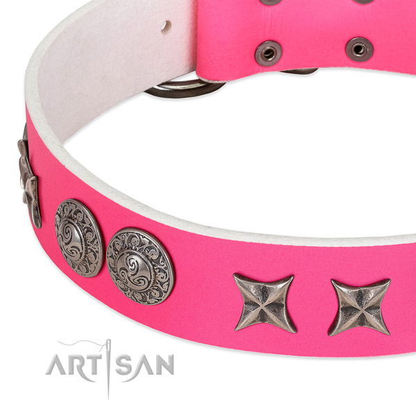 Top rate full grain leather dog collar handmade for your four-legged friend
