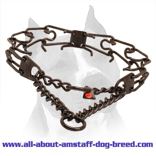 Prong collar of reliable black stainless steel for ill behaved canines