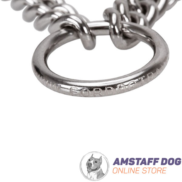 Reliable dog prong collar of corrosion resistant stainless steel for large breeds