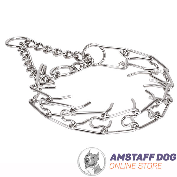 Reliable rust resistant dog pinch collar with stainless steel removable prongs