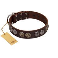 """Treasure Hunter"" FDT Artisan Brown Leather Amstaff Collar with Old-Bronze-like and Silvery Medallions"