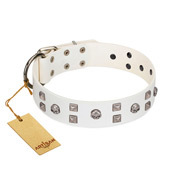 """Rock the Sky"" Durable FDT Artisan White Leather Amstaff Collar with Chrome-plated Decorations"